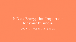 Is Data Encryption Important for Your Business?